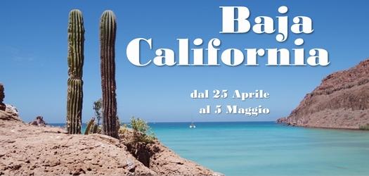 Crociera in Baja California dal 25 aprile al 5 maggio